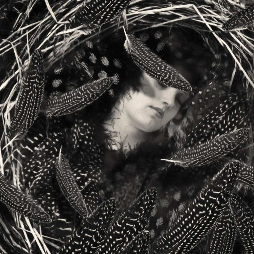 Black and white of woman with feathers