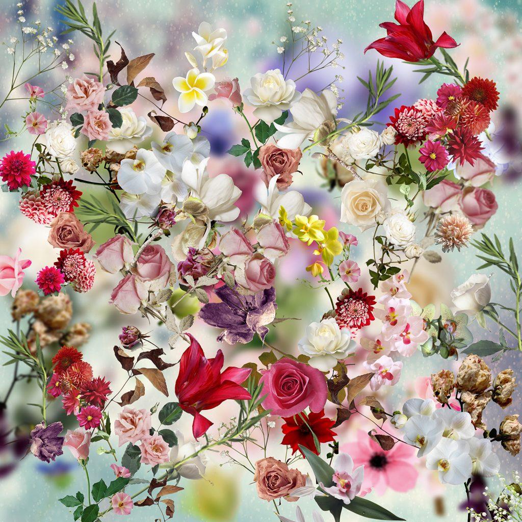 Edem garden-1 flower art print