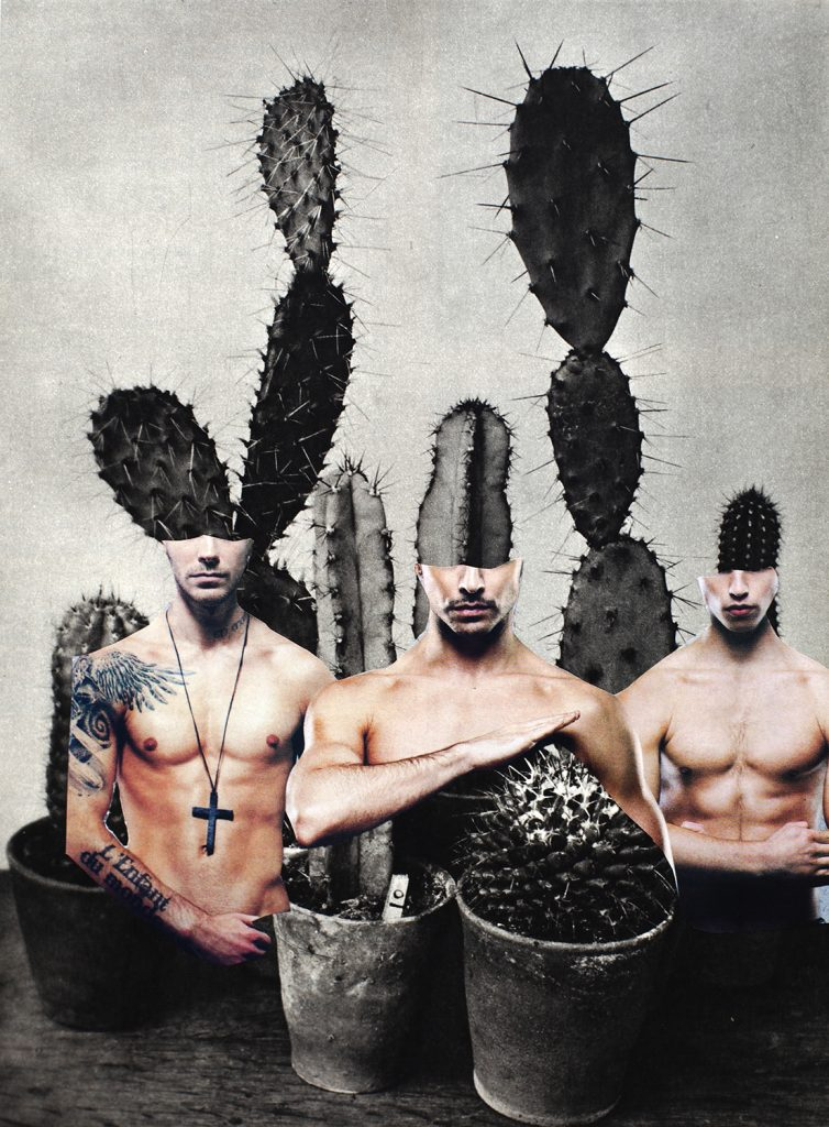 collage of men and cactuses