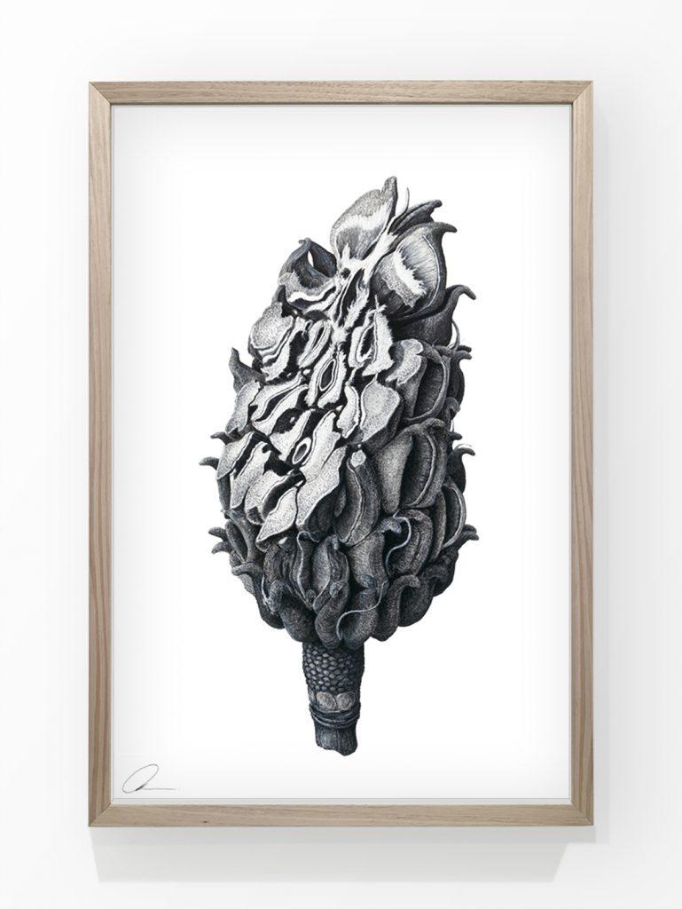 Augmented Study - nature inpired art